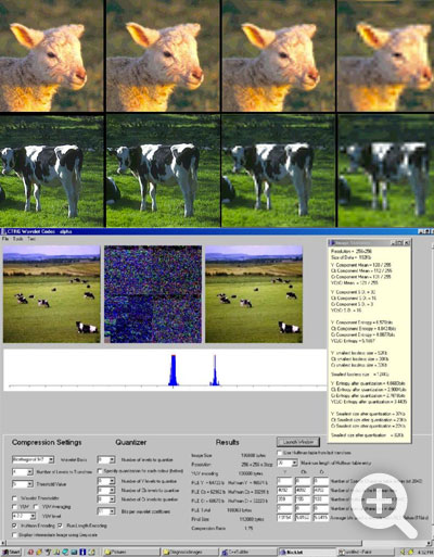 Image Compression Research